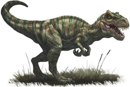 800px-Allosaurus